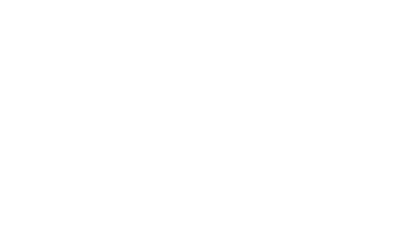 Simon Interieur